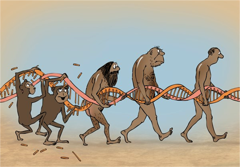 e-dna-repair-cartoon